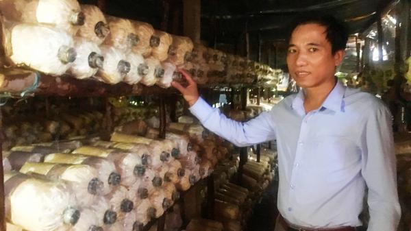 Quảng Bình: Bỏ việc nhà nước, vợ chồng về quê trồng nấm lãi cả trăm triệu/năm