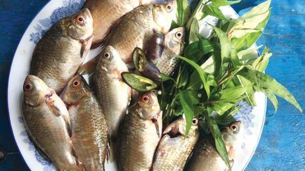 Hương vị quê nhà: Dân dã với món cá diếc kho với rau răm